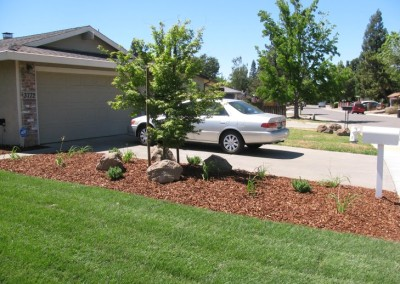 Front Yard Renovation - After 3