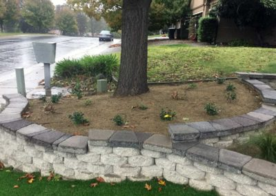 Front Yard Renovation - After 4